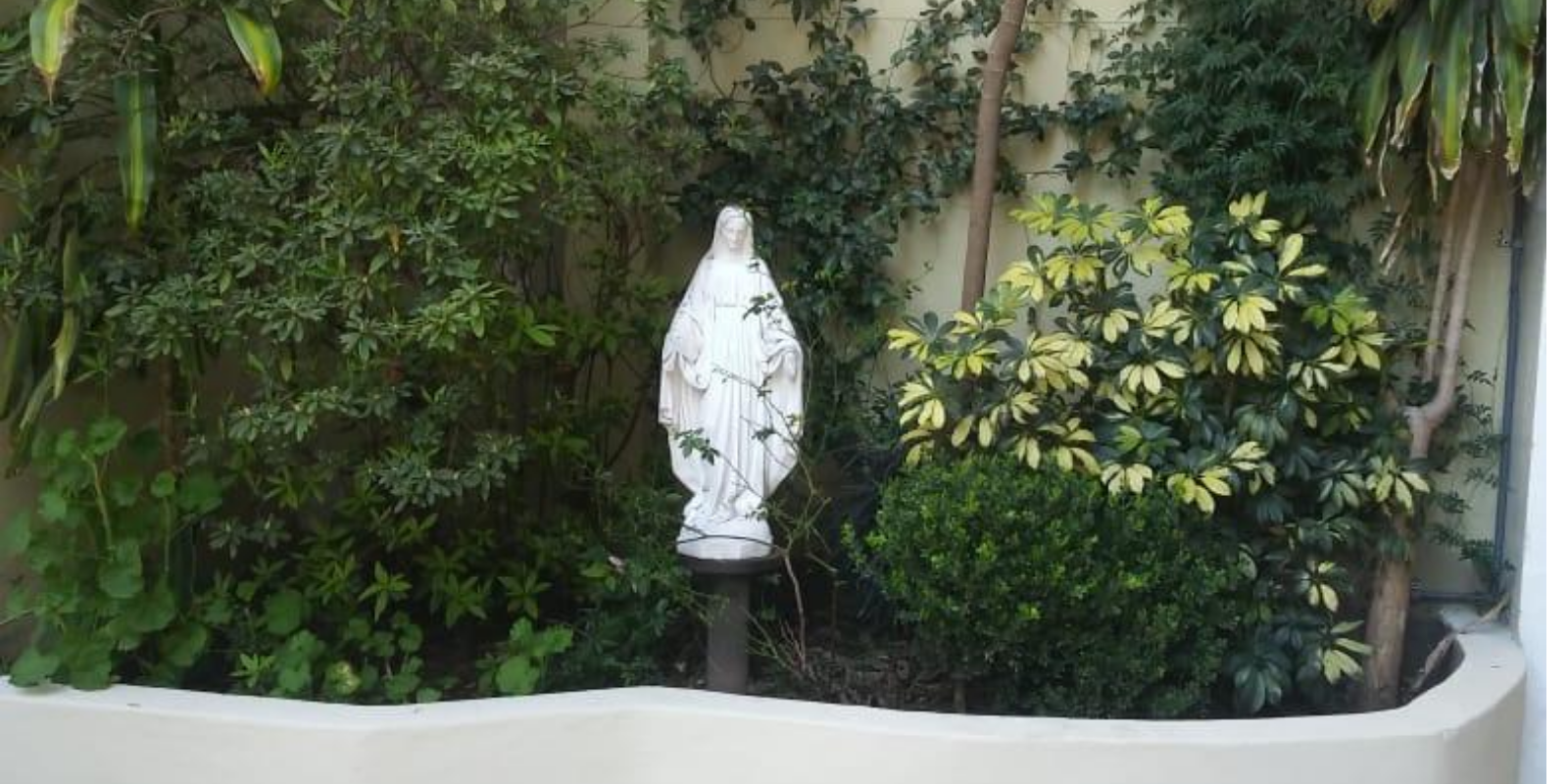 Día de la Solemnidad de la asunción de Santa María y día del Colegio